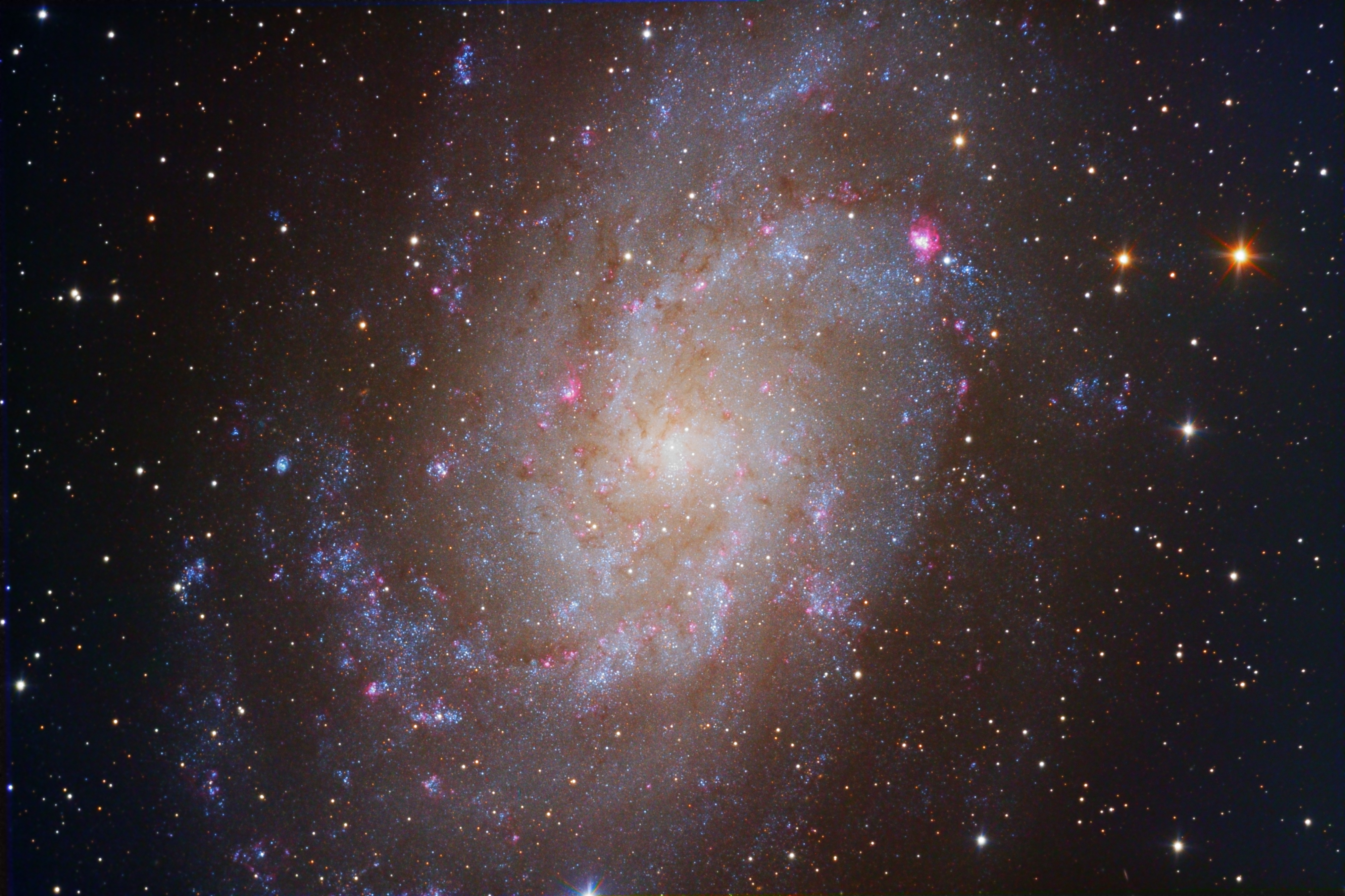 M33 (Triangulum Galaxy) (3541K)